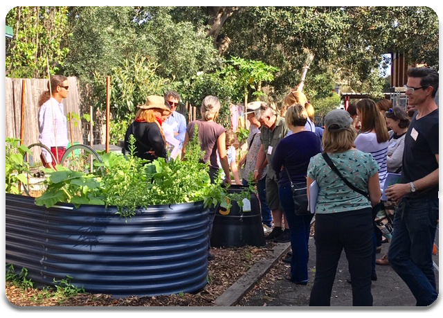 Teachers learning about kitchen gardens