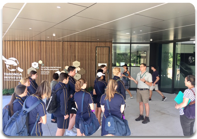 Students learning about Taronga Zoo as an economic enterprise